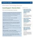 Covid Support/Remote Work